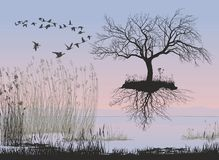 Flying apple tree without leaves with roots. Vector illustration of a flying leafless apple tree with roots Stock Images