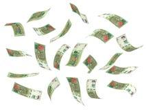 Flying Argentina Pesos Stock Image