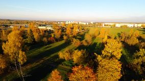 Flying around autumn park. Green fields and yellow trees. Aerial footage. stock footage