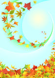 Flying autumn leaves. Royalty Free Stock Images