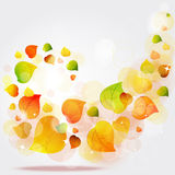 Flying autumn leaves background Stock Photos