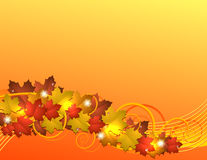 Flying autumn leaves background Royalty Free Stock Images