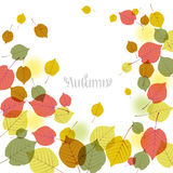 Flying autumn leaves background with space for text. File contains Clipping mask with un-cropped images (so you can edit the position etc), transparency Stock Images