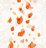 Flying autumn orange leaves background Royalty Free Stock Image