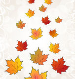 Flying autumn orange maple leaves. Illustration flying autumn orange maple leaves - vector Stock Images