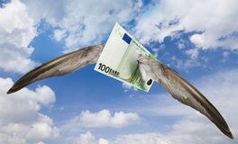 Flying away euro Royalty Free Stock Images