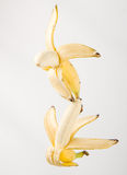Flying bananas Royalty Free Stock Photography