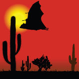 Flying bat black silhouette and cactus Stock Image