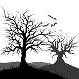 Flying Bat and tree grass silhouette vector illustration