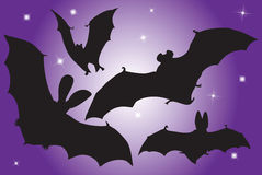 Flying bats. Stock Images