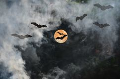 Flying bats from the red moon in horrible night. Flying scary bats from the red moon in smoke with horrible night backgound stock photography