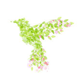 Flying beautiful bird with flowers and green leaves. Colibri icon. Flying beautiful bird with flowers and green leaves. Vector illustration Royalty Free Stock Photos