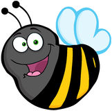 Flying Bee Cartoon Mascot Character Royalty Free Stock Images