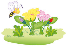 Flying bee on flowers Royalty Free Stock Photos