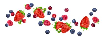 Flying berries isolated on white background with clipping path, different falling wild berry fruits, collection. Flying berries isolated on white background with royalty free stock image