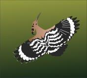 Flying bird. Bird flying on air royalty free illustration