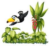 A flying bird in the garden Stock Photo