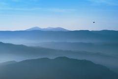 Flying bird over mountains of Parque natural de la Sierra y los. Cañones de Guara in Pano, Huesca, Spain Royalty Free Stock Photos