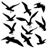 Flying birds black silhouettes vector set Royalty Free Stock Photos