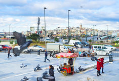 The flying birds. ISTANBUL, TURKEY - JANUARY 13, 2015: The roasted chestnut cart on Rustem Pasha Square, on January 13 in Istanbul Royalty Free Stock Photography
