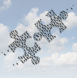 Flying Birds Puzzle Royalty Free Stock Photo