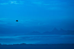 Flying Birds Silhouette. Bird Flying across the mountain silhouetted Stock Images