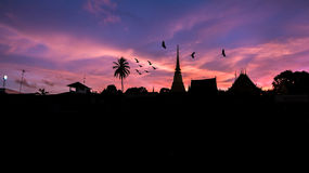 Flying birds and Silhouettes Sunset on the Temple Royalty Free Stock Photography