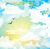 Flying birds and sunset cloudy sky Royalty Free Stock Images