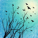 Flying birds and tree branches on grunge back lit. Flying birds and tree branches silhouettes on grunge background with scratch texture Stock Illustration