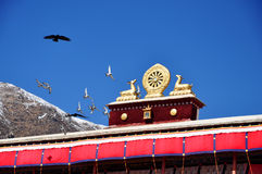 Flying Birds and Two golden deer flanking a Dharma wheel. The rooftop statues of two golden deer flanking a Dharma wheel on Drepung Monastery main building stock photography