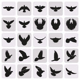 Flying black dove pigeon simple icons set. Flying bird like dove pigeon silhouettes set Stock Photos