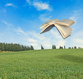 Flying book Stock Photos