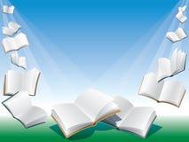 Flying books. Open flying books, blue background with sunshine Royalty Free Stock Image