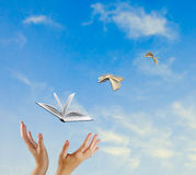 Flying books. As a methaphor Royalty Free Stock Images