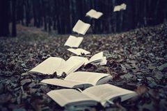 Flying books. In forest during autumn