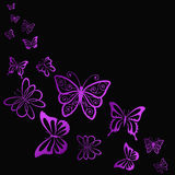 Flying bright butterfly in the dark Stock Photo