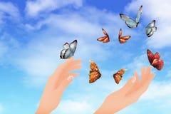 Flying butterflies Stock Photo