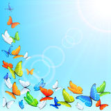 Flying butterflies Royalty Free Stock Image
