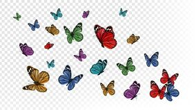 Free Flying Butterflies. Colorful Butterfly Isolated On Transparent Background. Spring And Summer Insects Vector Illustration Stock Photography - 169856372