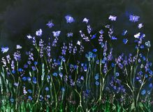 Flying butterflies in lavender field at night. The dabbing technique near the edges gives a soft focus effect due to the altered surface roughness of the paper vector illustration
