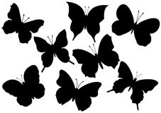 Flying butterflies vector illustration Stock Images