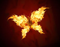 Flying butterfly. With fiery wings Royalty Free Stock Image