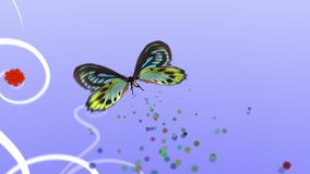 Flying butterfly. With decorative ornament on background stock video