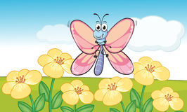 A flying butterfly Stock Photos