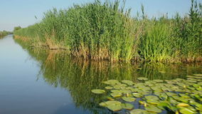 Flying camera over Dunay river in Vilkovo, Ukraine stock video