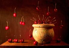 Flying Cherries. Still life with cherries Royalty Free Stock Photo