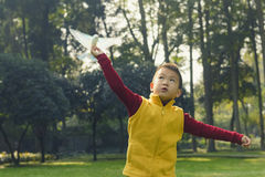 Kid flying toy bird. Chinese kid flying toy bionics bird in park Stock Image