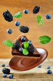 Flying chocolate tart with blackberries and blueberries Royalty Free Stock Image