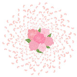 Flying from the circle of rose petals, sakura with a bouquet of roses in the middle. Whirlwind, wedding background, love Stock Photography