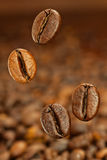 Flying coffe beans Stock Photos